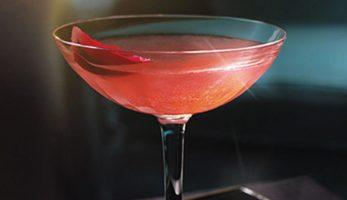 m2woman-recipe-martini-cocktail